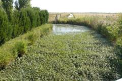 Canal de Loire sur la D214